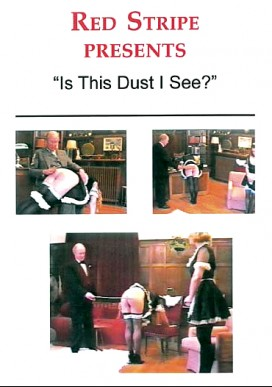 Is This Dust I See?