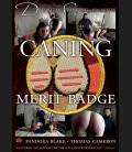Caning Merit Badge